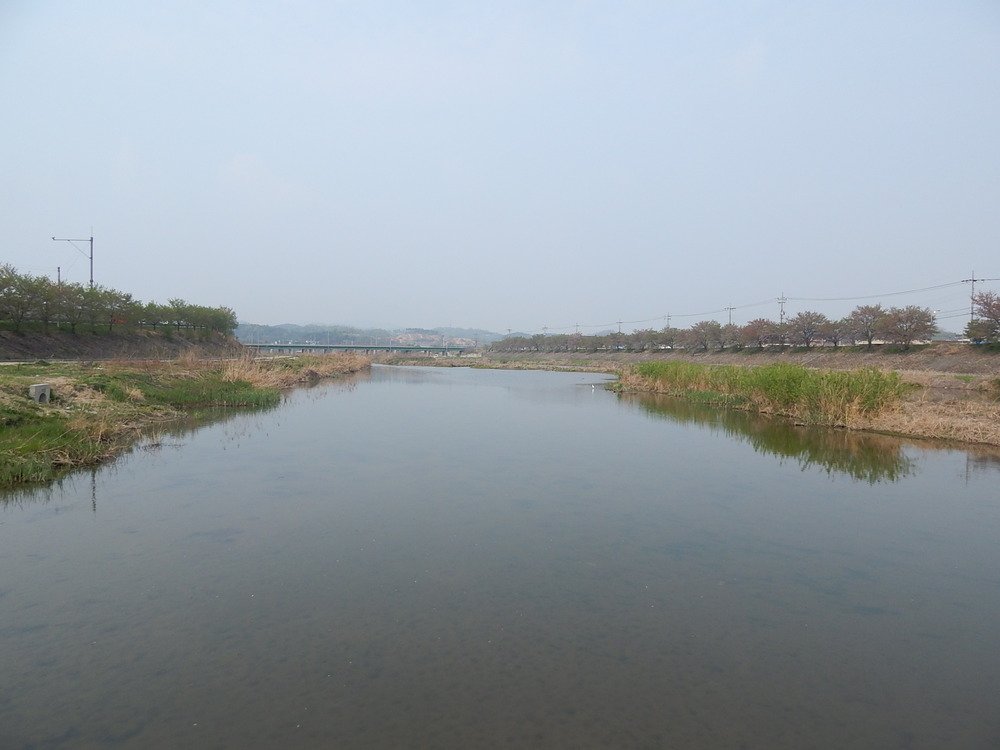 The river near my apartment in Korea