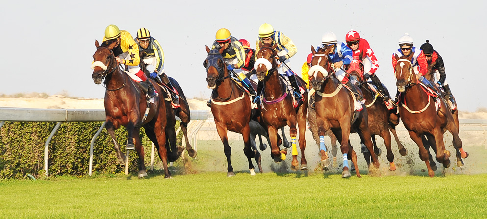 Horse Racing at Sakhir Race Course