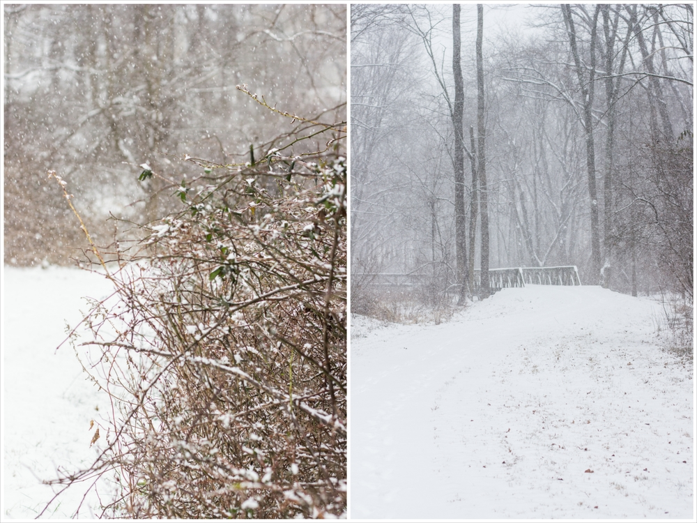 January-9873_Fotor_Collage.jpg