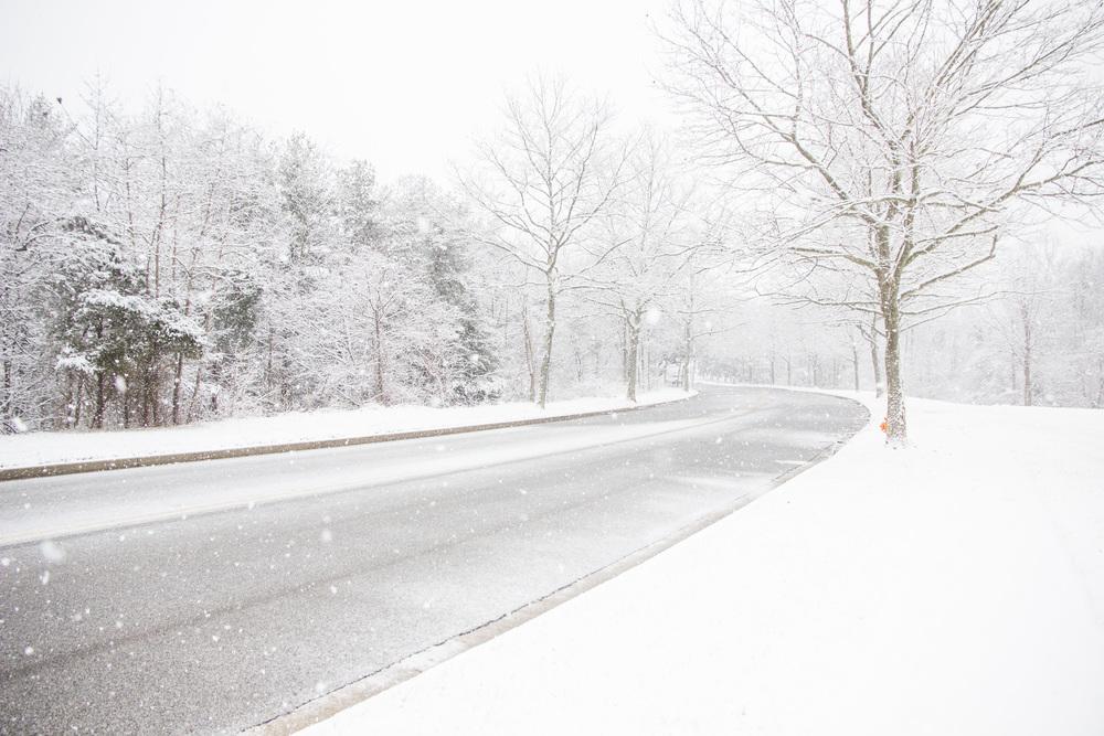 Snow-0072.jpg