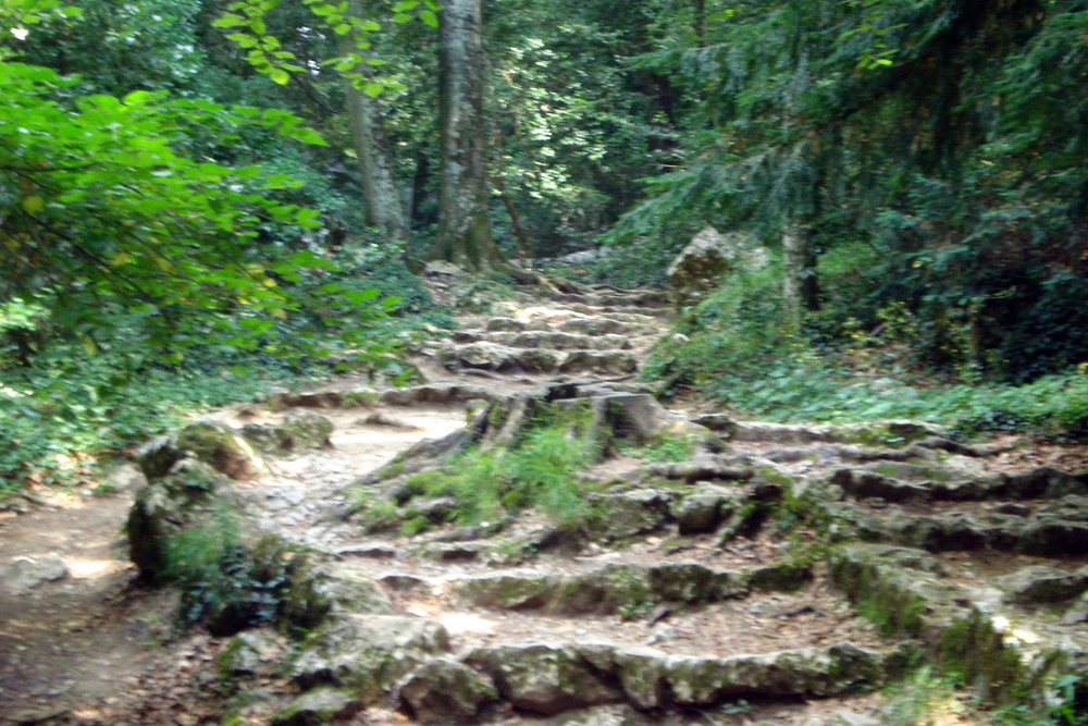 Travel the ancient roads through Fairy Land ... ... in the footsteps of the ancestors.