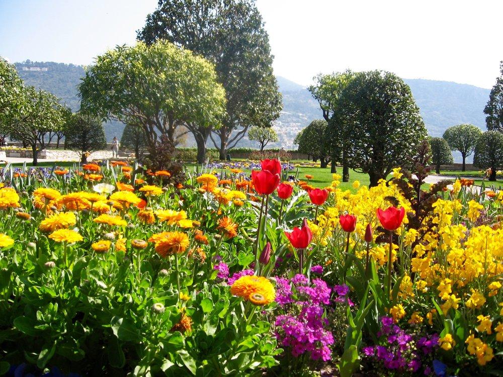 Cote d'Azur, France - Spring Flowers.jpg