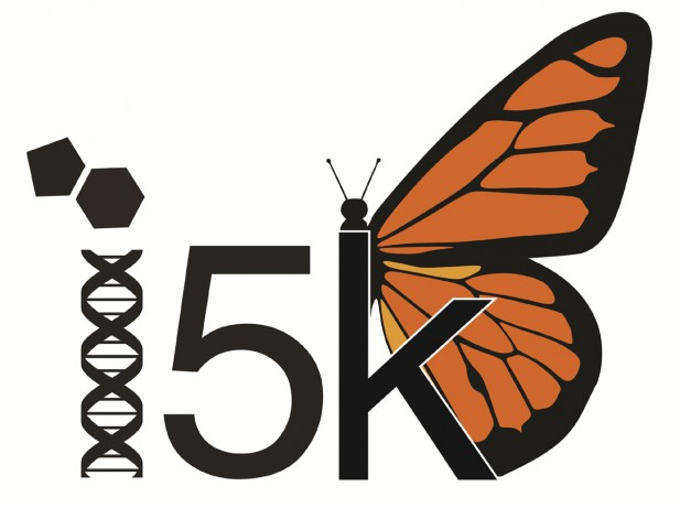 The i5k is a consortium of insect scientists with plans to determine the genome sequence of 5000 species of insects within the next decade.
