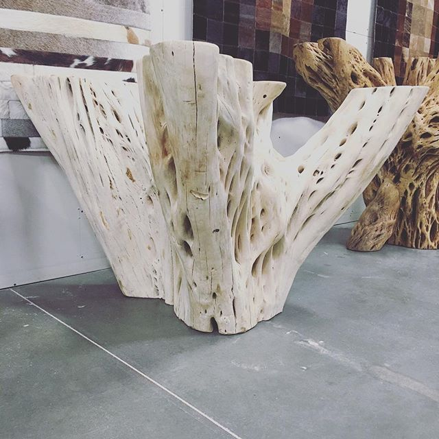 Loving this bleached out old cactus skeleton to use for a table base @maryamonsdesign #interiordesign @maryamons