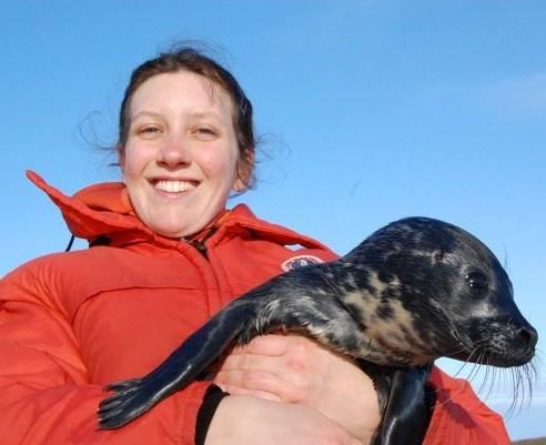 Harbour seal pup being held by JASCO's Dr. Héloïse Frouin-Mouy during a program of biological measurements.