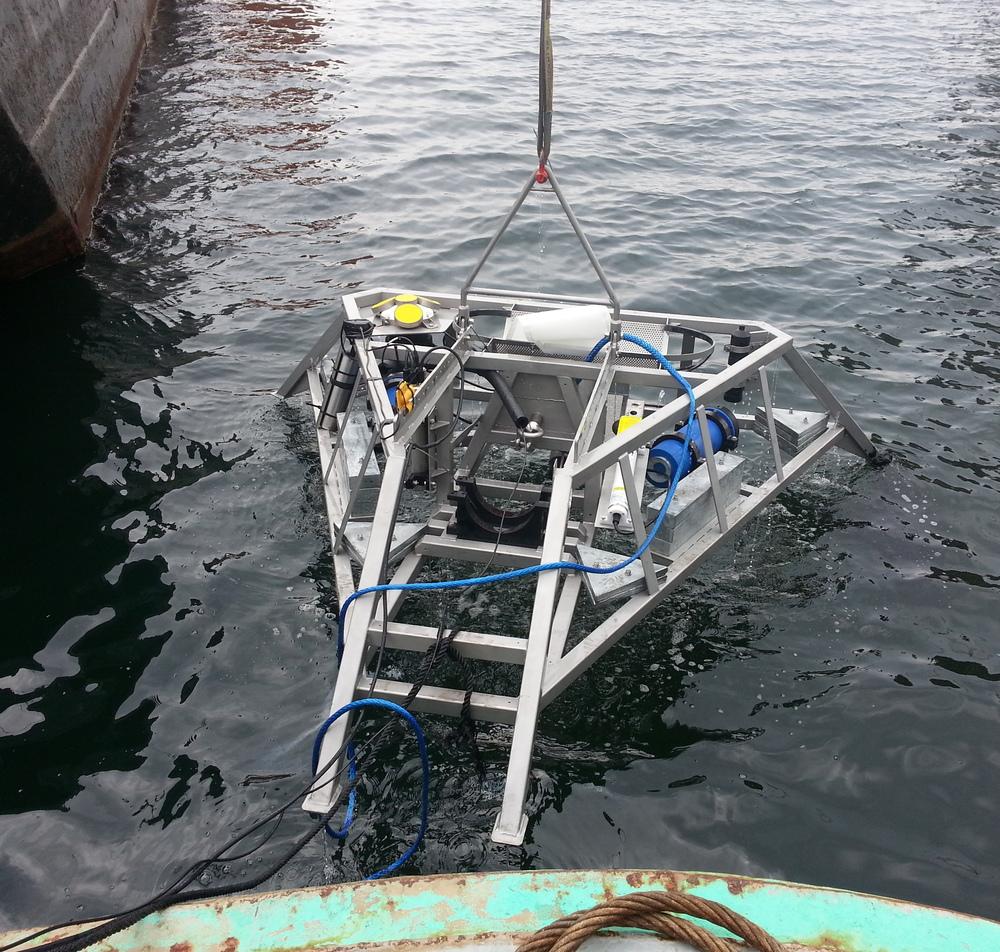 An AMAR Observer deployed on FORCE's Fundy Advanced Sensor Technology mini-platform (mini-FAST).