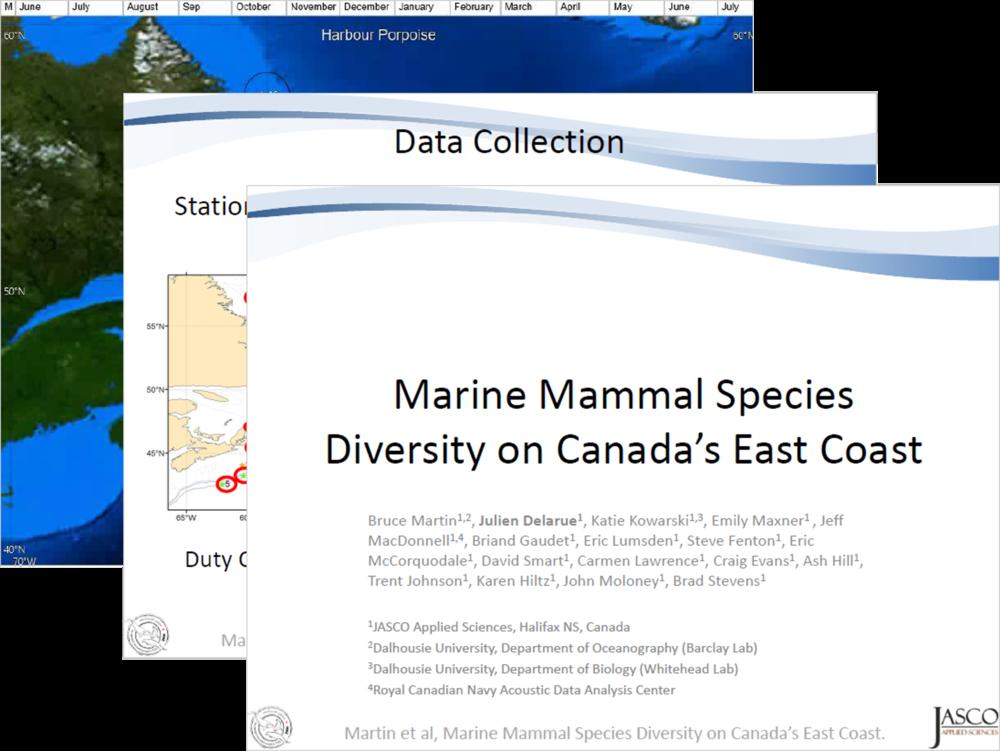 Marine mammal species diversity on Canada's East Coast (PDF) - Bruce Martin, Julien Delarue, Katie Kowarski, Emily Maxner , Jeff MacDonnell, Briand Gaudet et al.