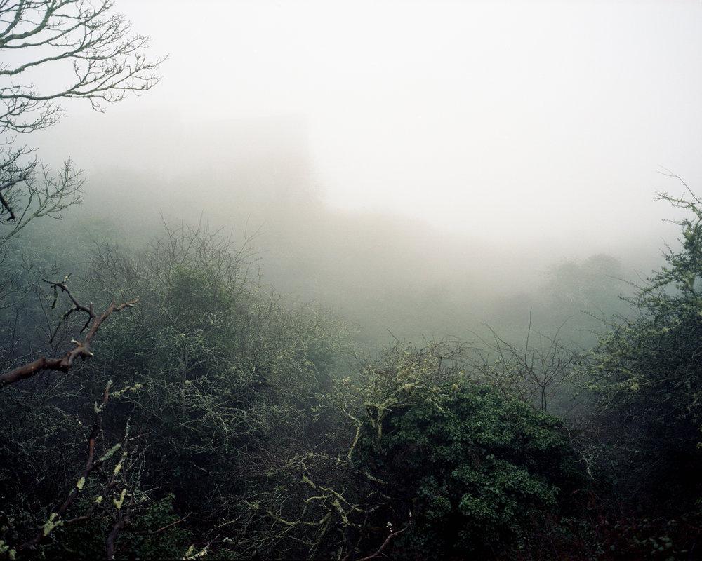Staddon Heights, Devon, England.