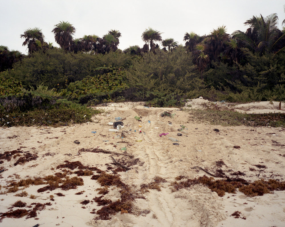 Turtle tracks leading towards a nest surrounded by discarded plastic. Tulum, Mexico.