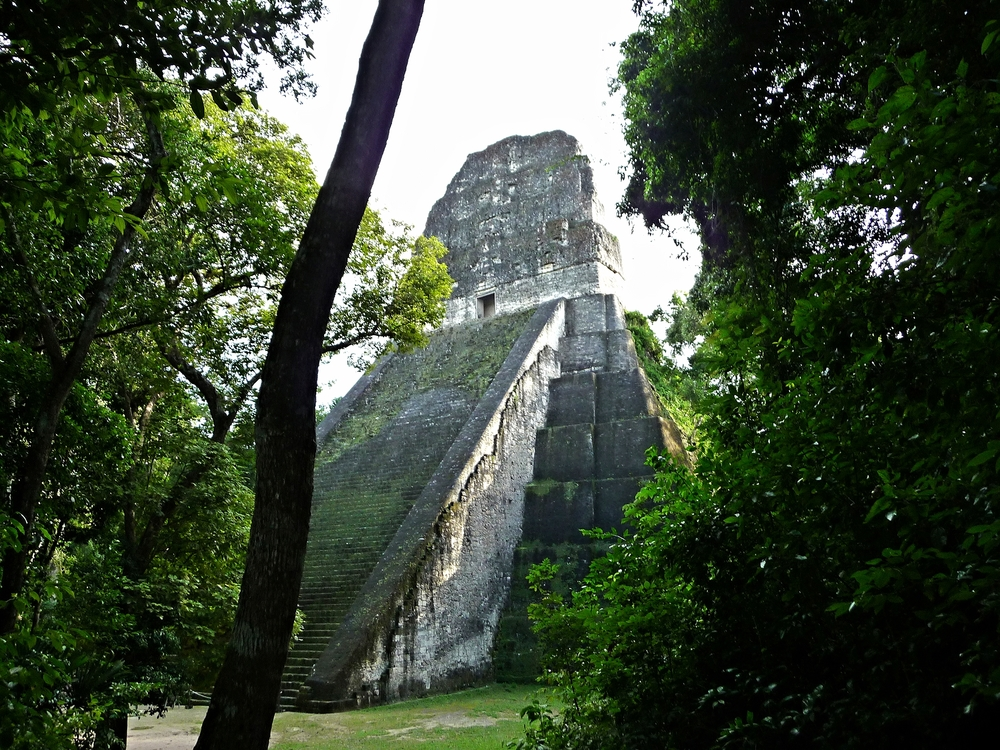 Temple Five - Tikal Maya Site - Belize Vacation Packages - Tikal - SabreWing Travel