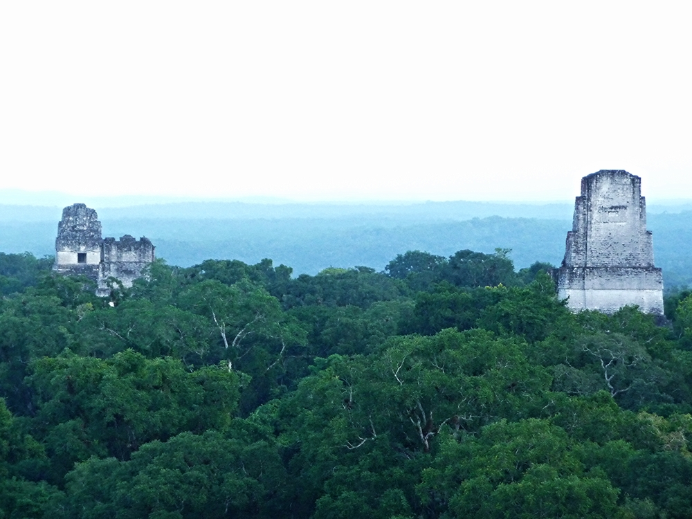 Temple Four - Tikal Maya Site - Belize Vacation Packages - Tikal - SabreWing Travel