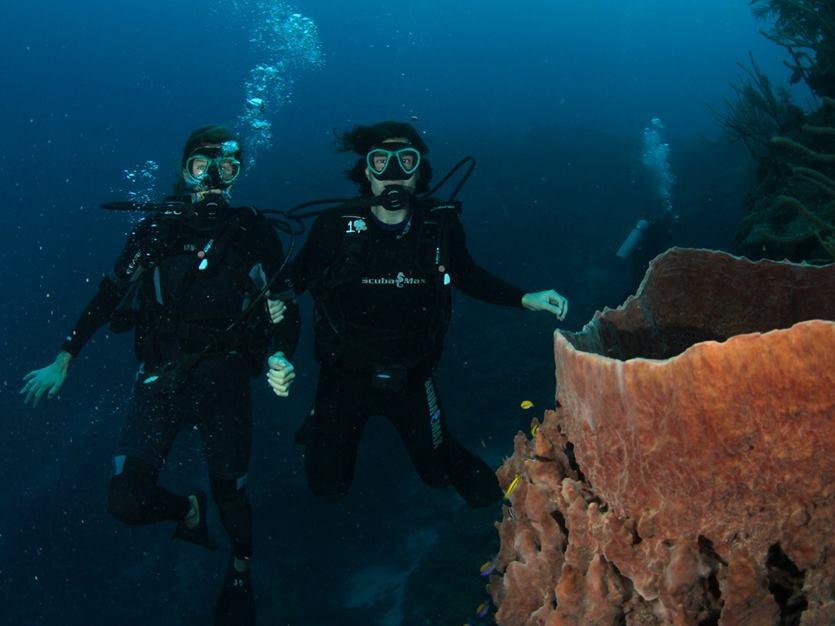 Divers at Glover's Reef, Isla Marisol Resort