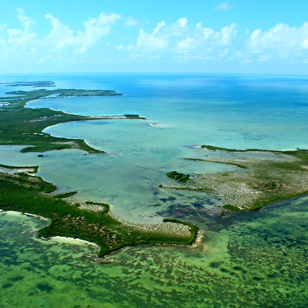 Rainforest & Reef Package - All Inclusive Caribbean Vacation Packages to Belize - SabreWing