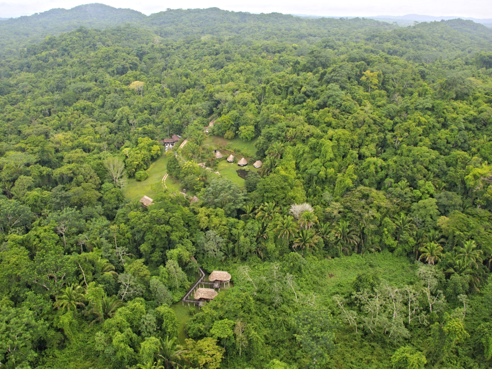 Pook's Hill Lodge is surrounded by 7,000 acres of rainforest