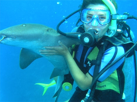 Diving from Ambergris Caye offers plenty of opportunity for close encounters with wildlife