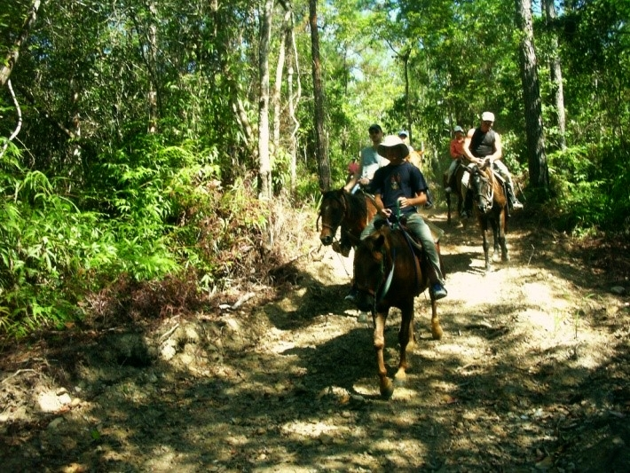 Horseback Riding through the jungle along the Belize Central Coast