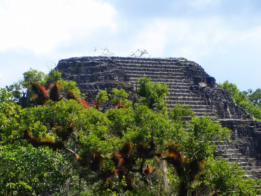 "A pyramid rises above the canopy at Tikal's ""Lost World"""