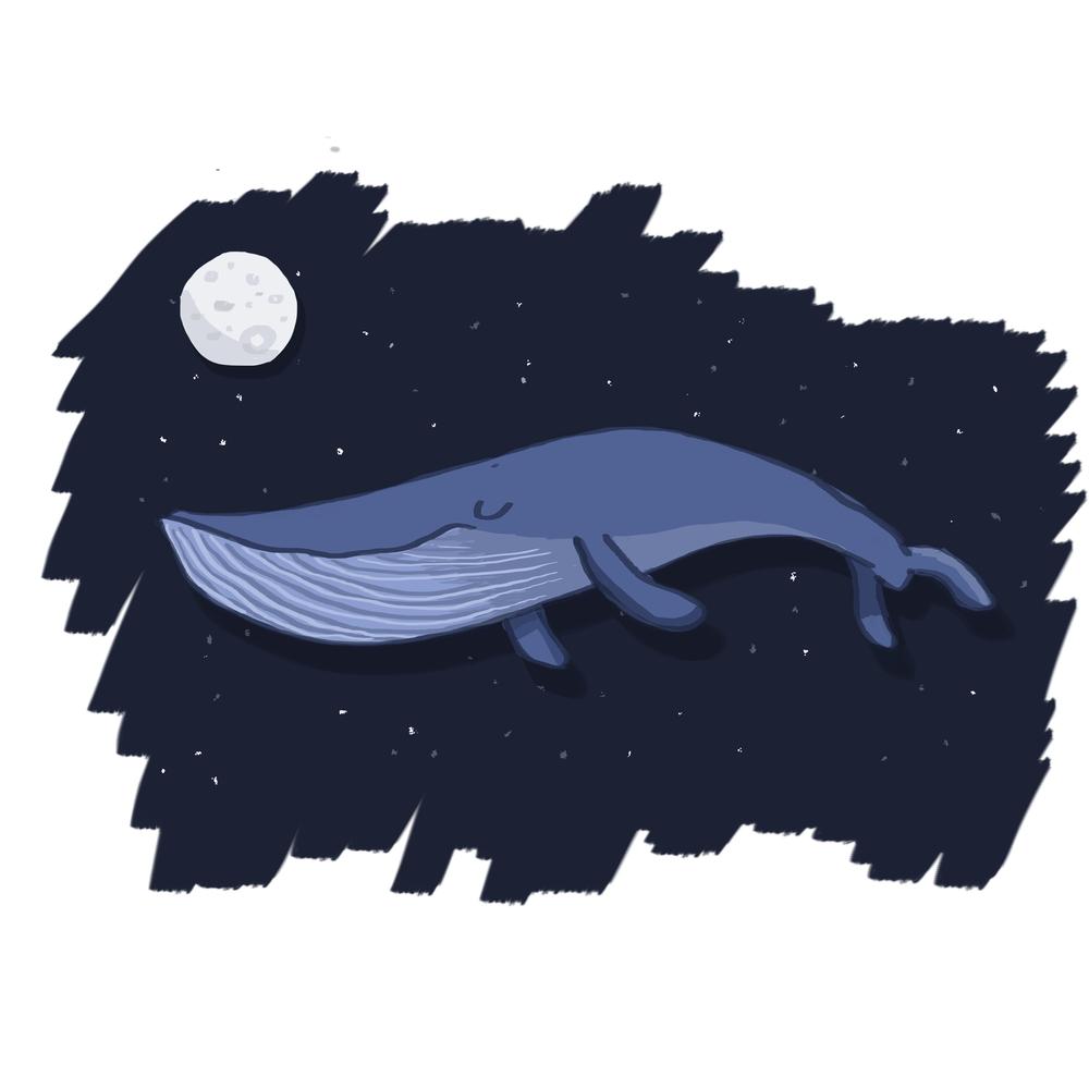 whale digital.jpg