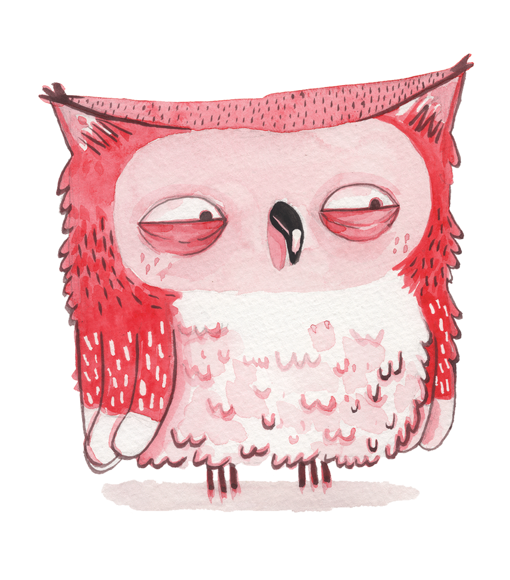 OWL-WEB.png