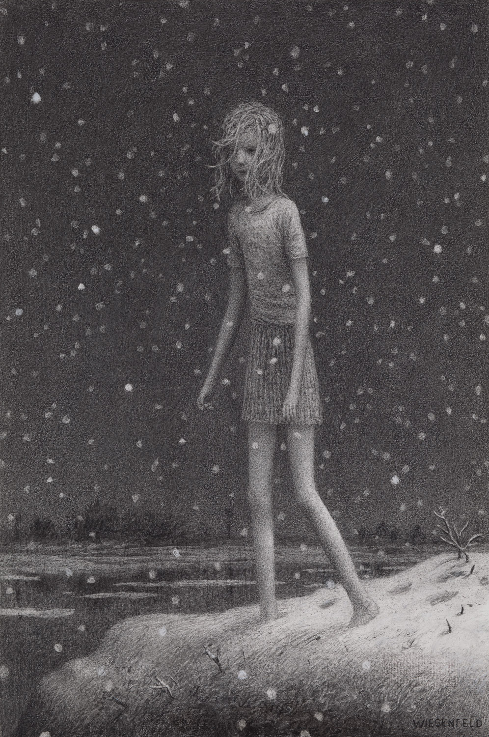 Clear Lake , charcoal on paper, 19.2 x 12 in, 2011