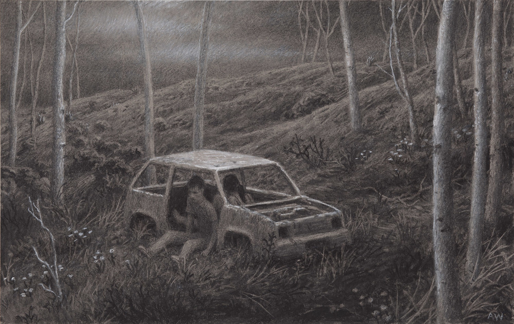 The Remains , charcoal and pastel on paper, 12 x 19 in, 2011