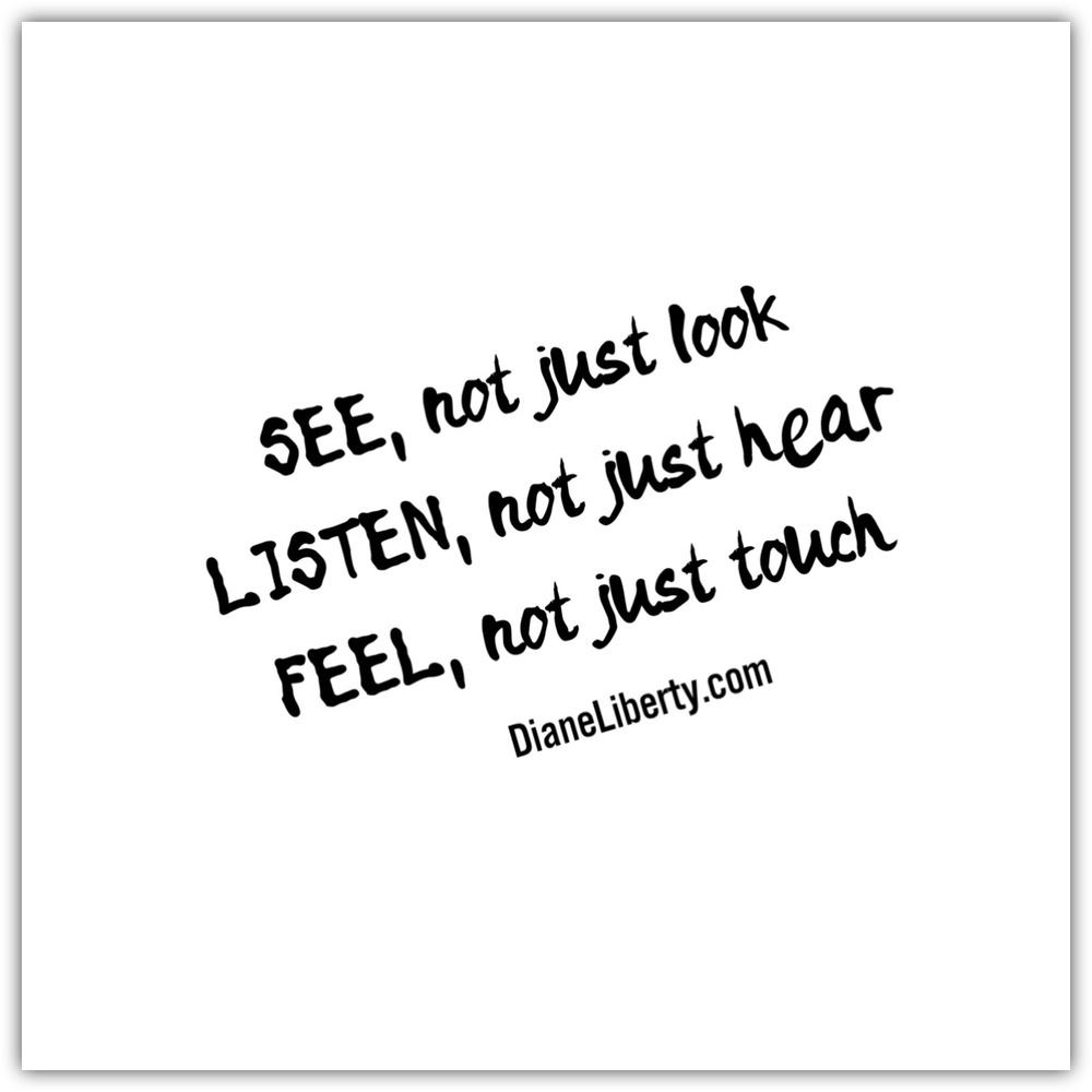 See Listen Feel