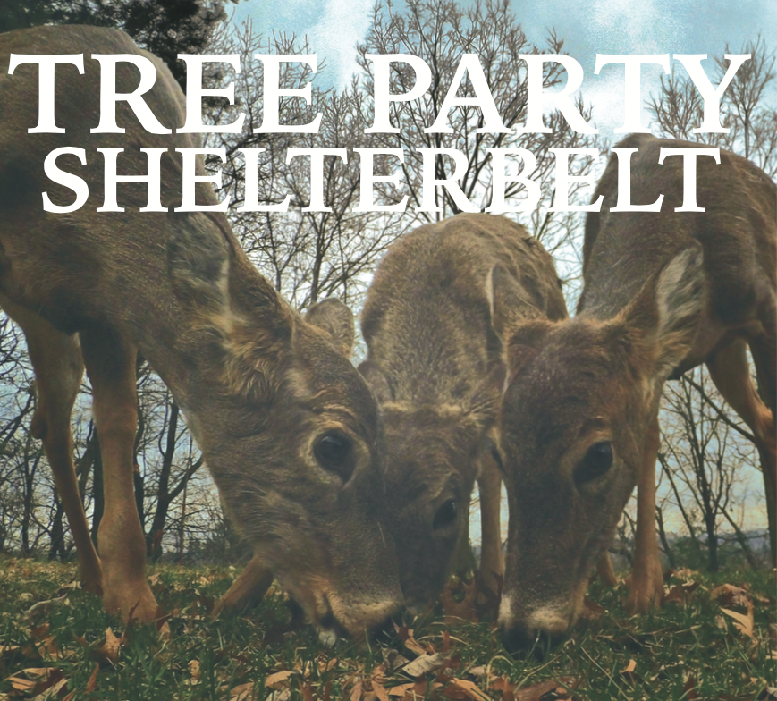 "Tree Party ""Shelterbelt"" Artwork"