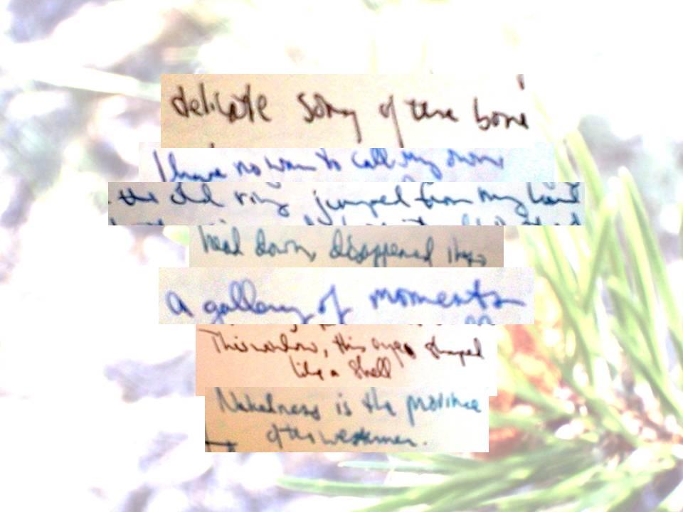 Scrap Poem 1.jpg