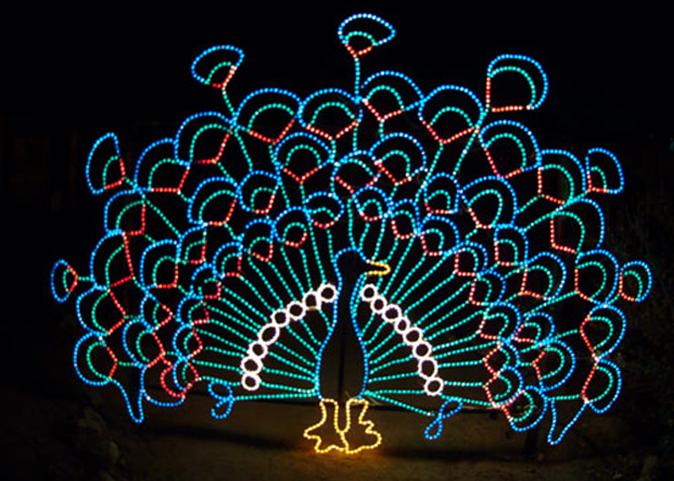 Peacock 1.png