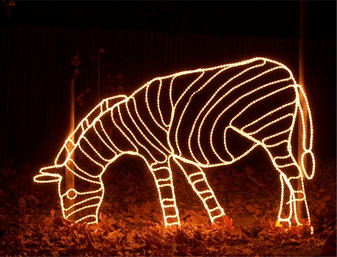 Zebra 1.png