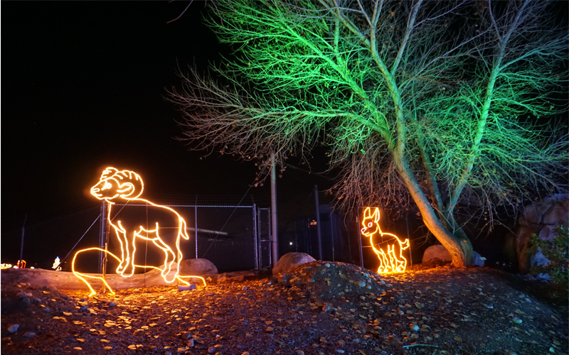 Big Horn Sheep with uplighting.png