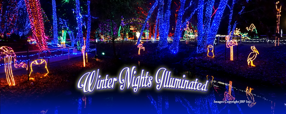 Winters Night Banner Final 4.png