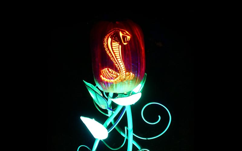 Snake Pumpkin.png
