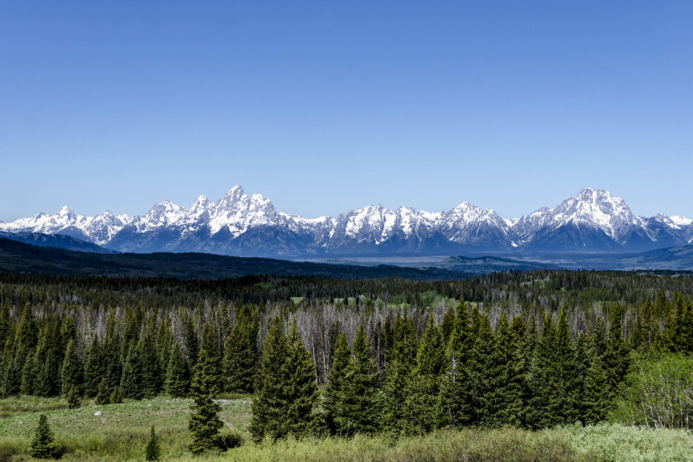 First view of the Grand Teton Mountain Range.