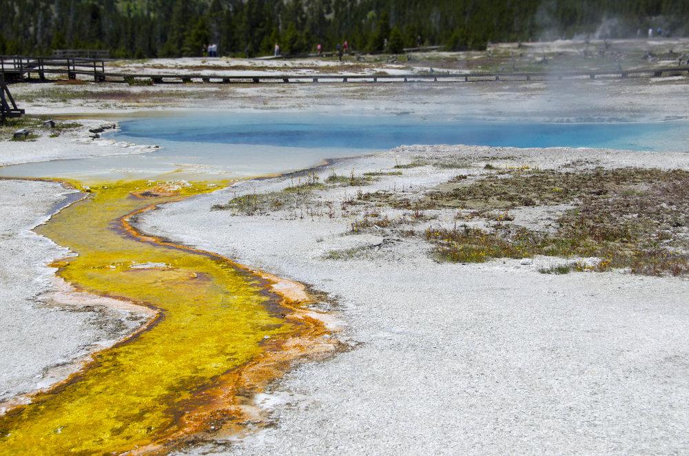 Yellowstone Springs 1 - 20180613_0110.jpg