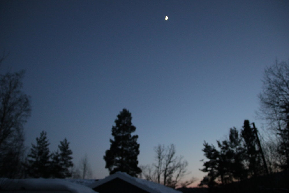 A hazy moon glowed above us.