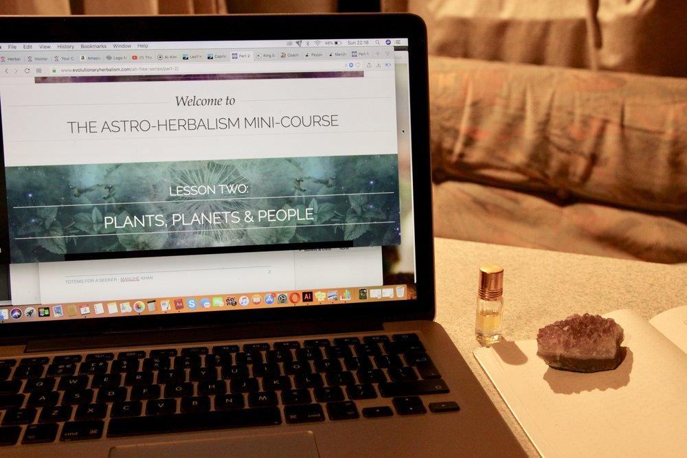 Sajah Popham's mini-course in Astro-Herbalism