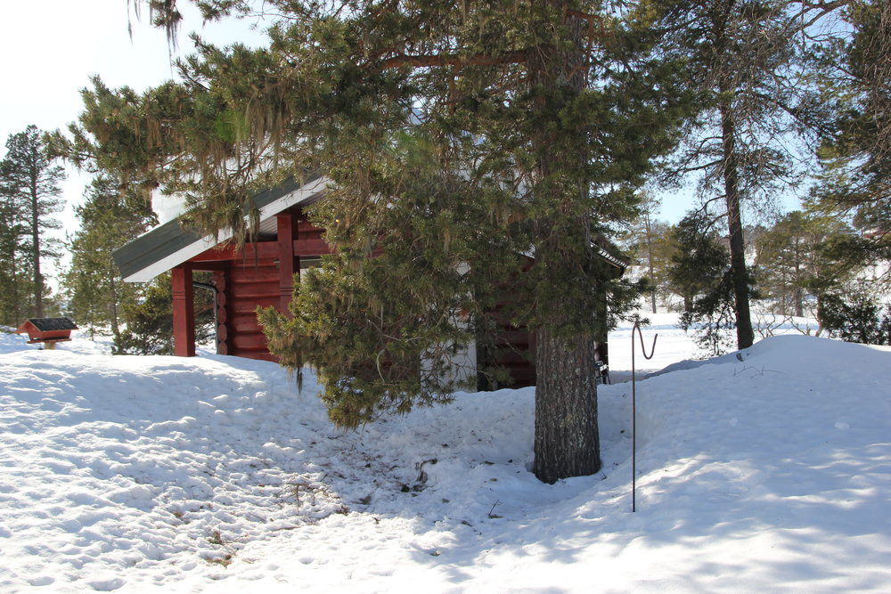 The second cabin,looks a lot different in summer.