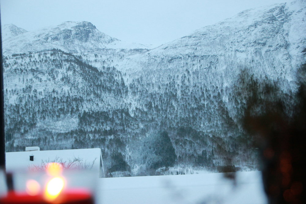 View from my living room window in Isfjorden. Norway. January 2019.