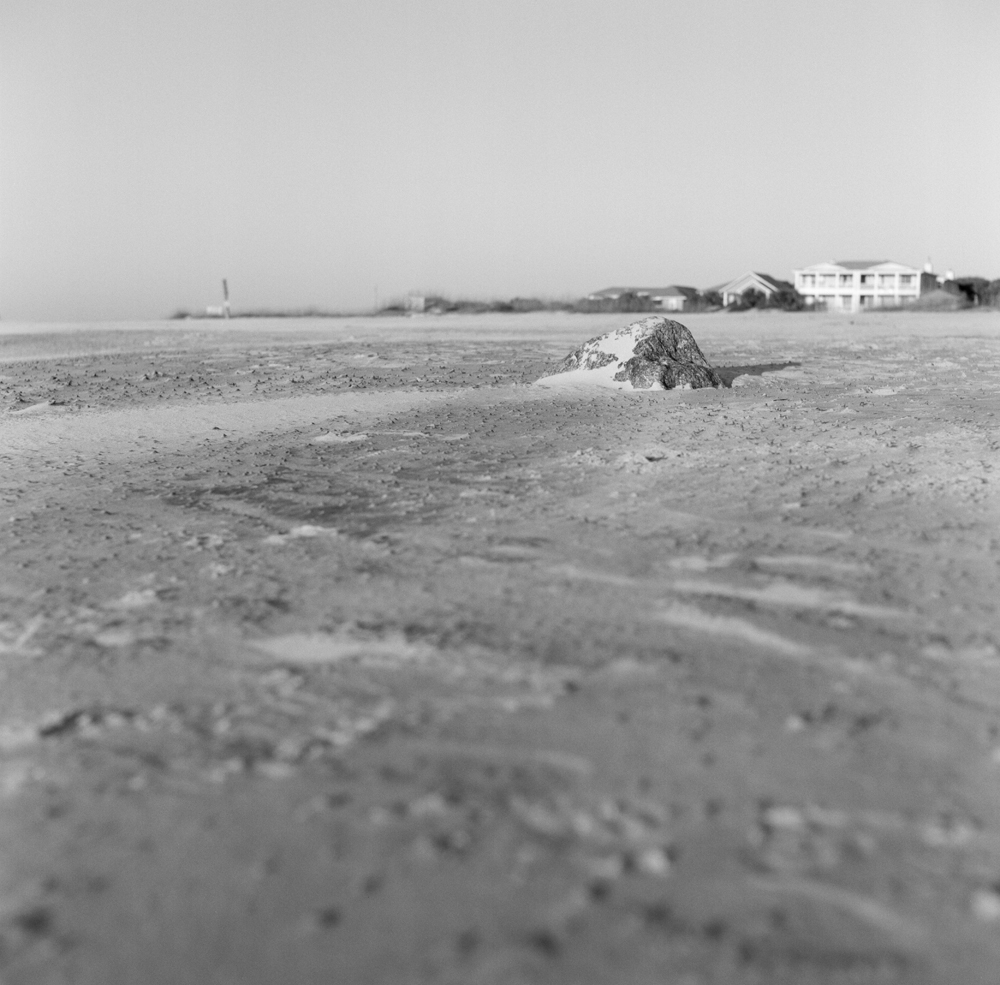 Kodak Tri-X 400 120mm | Mamiyaflex TLR