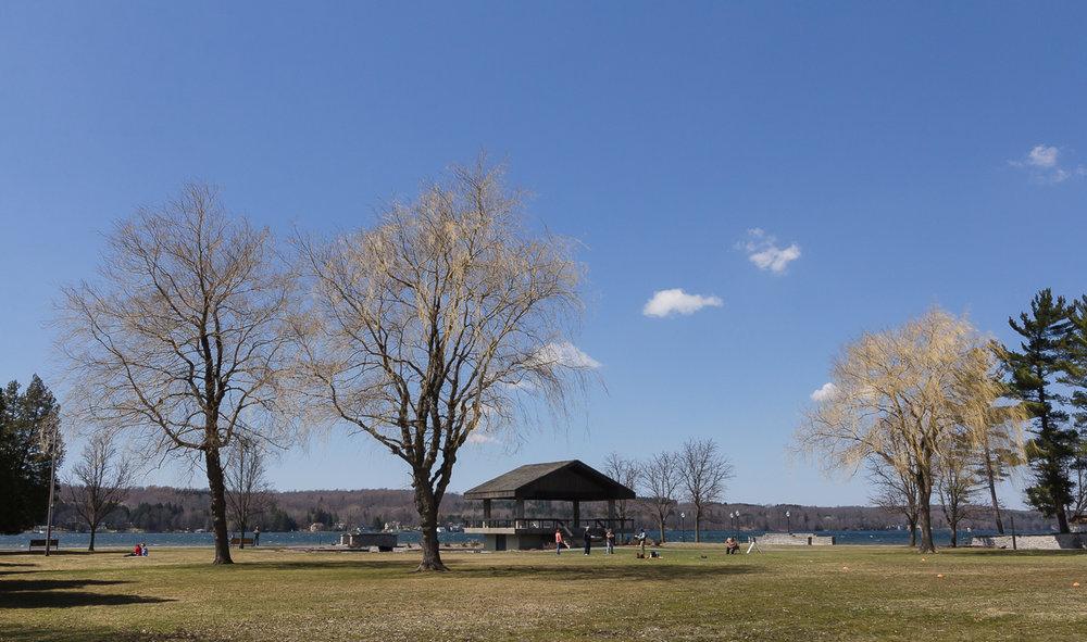 The park at the lake.