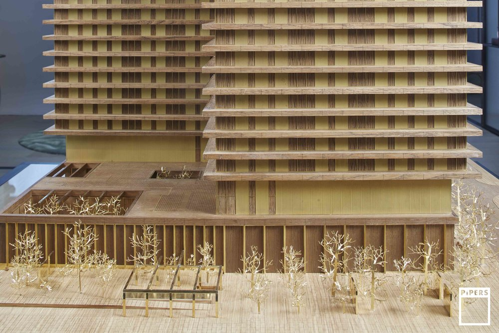 wardian timber tower architecture model