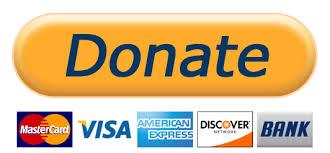 Donate Button.jpeg