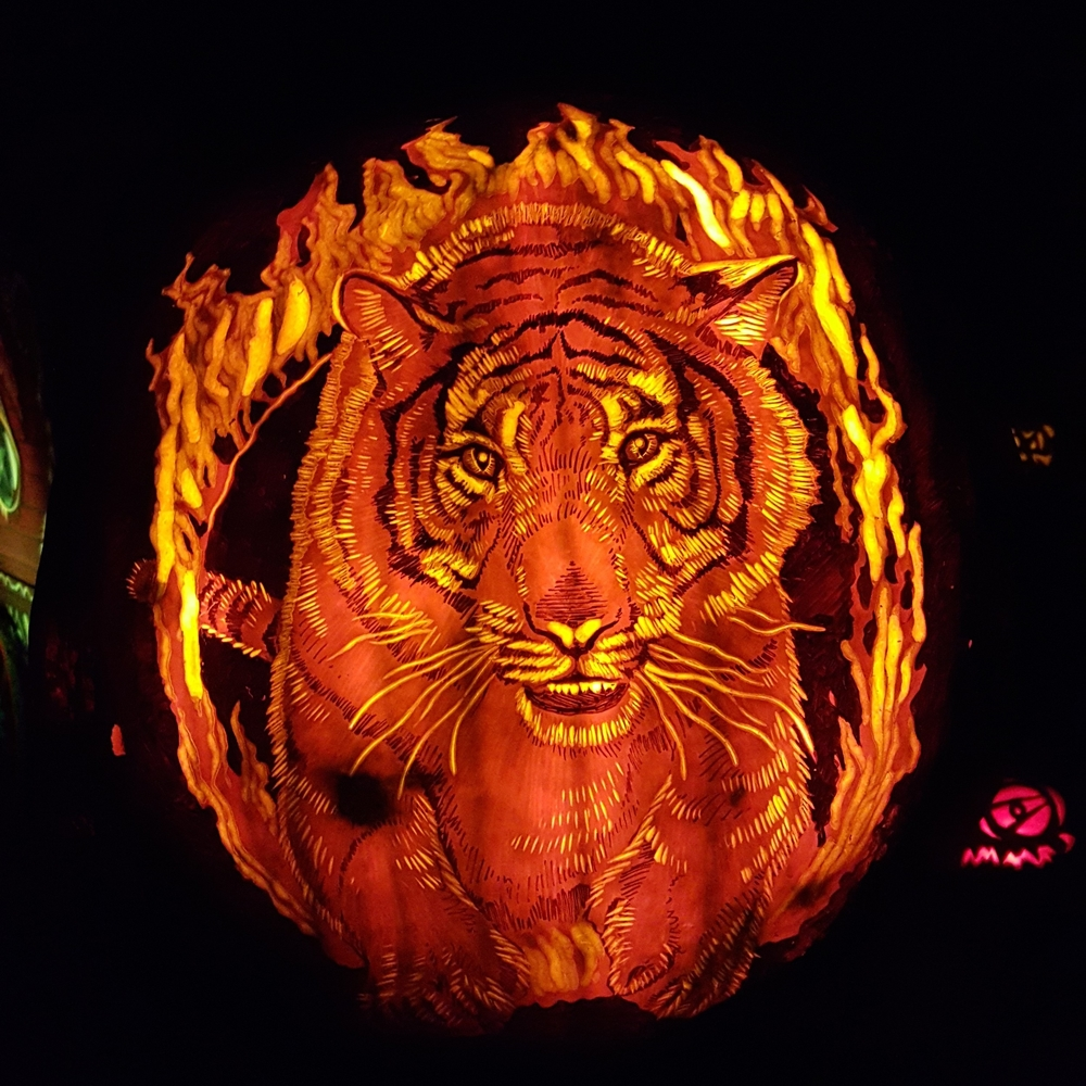 Tiger Pumpkin