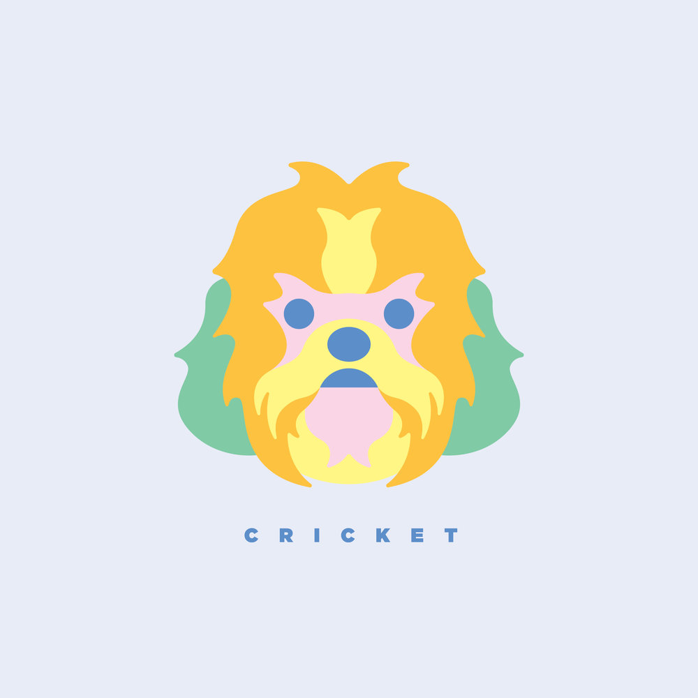 artwork_cricketPortrait.jpg