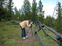 On assignment in Yellowstone National Park, 2004