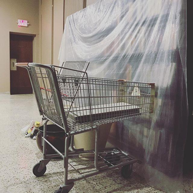 #plasticbag #groceryhaul