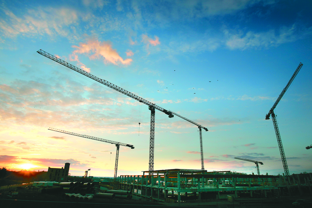 Cranes at sunset - credit Keith Myers KC Star.JPG