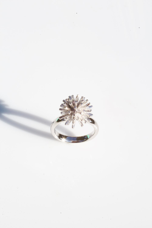 Burst ring