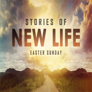 STORIES OF NEW LIFE  Easter Sunday
